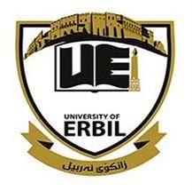 جامعة أربيل الدولية