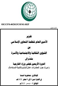 2013 تقرير عن الشئون الاقتصادية والاجتماعية والاسرة
