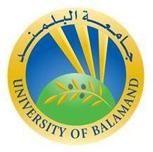 جامعة البلمند