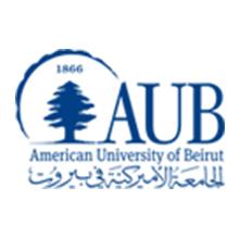 معهد عصام فارس للسياسة العامة والشؤون الدولية