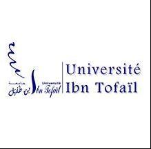 جامعة ابن طفيل