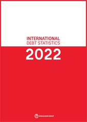 إحصاءات الديون الدولية لعام 2022